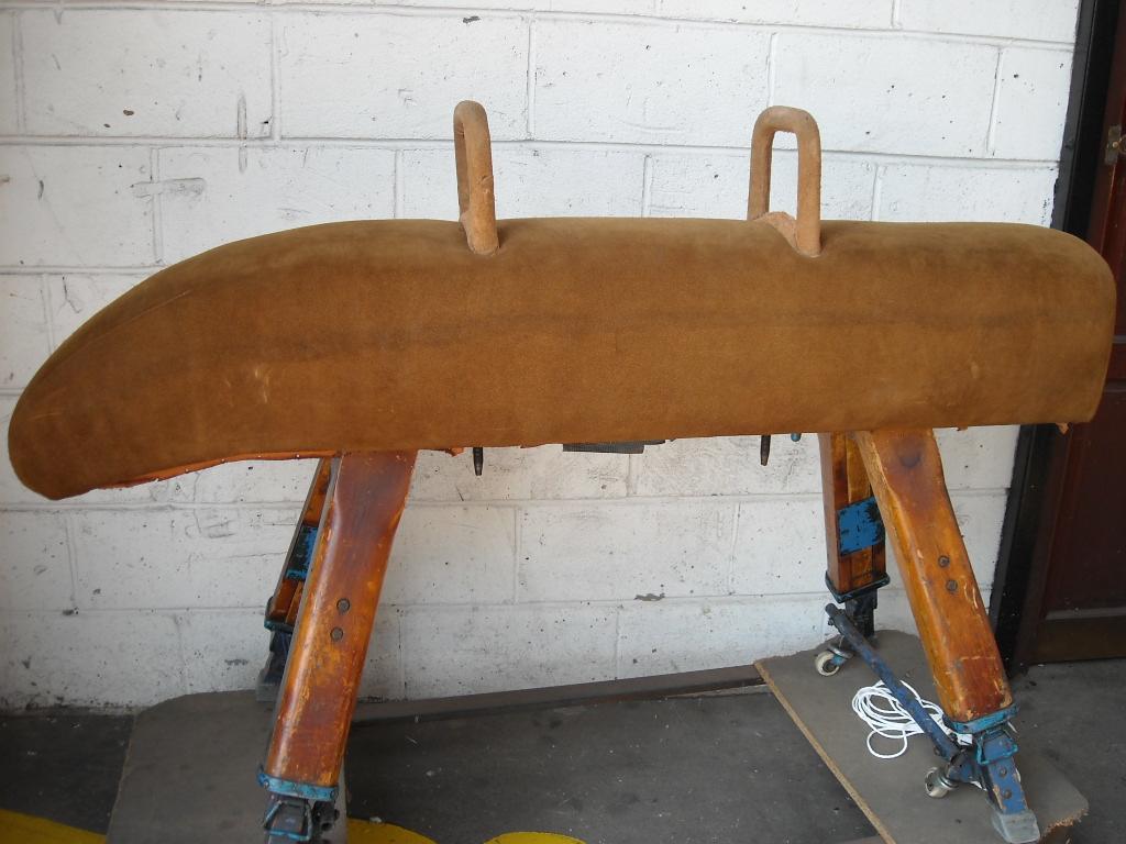 Horse Pommel